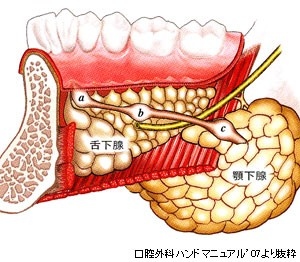 endoscopic-surgery_img07